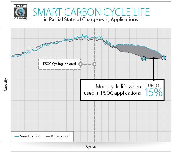 Smart Carbon Cycle Life Chart