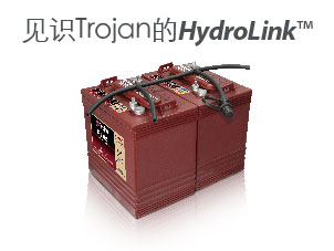HydroLink Watering System